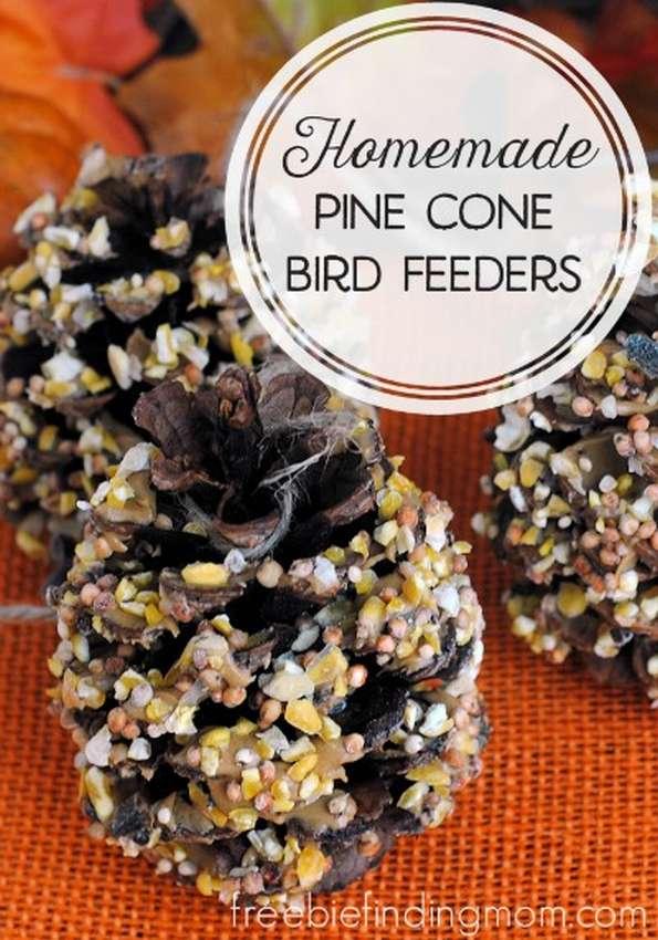 кормушки для птиц из шишек